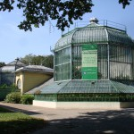 Botanical Garden Bucharest Old Green House